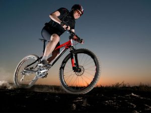 What to Do & See | Goegap Nature Reserve MTB Trails
